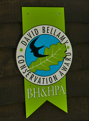 david_bellamy_award